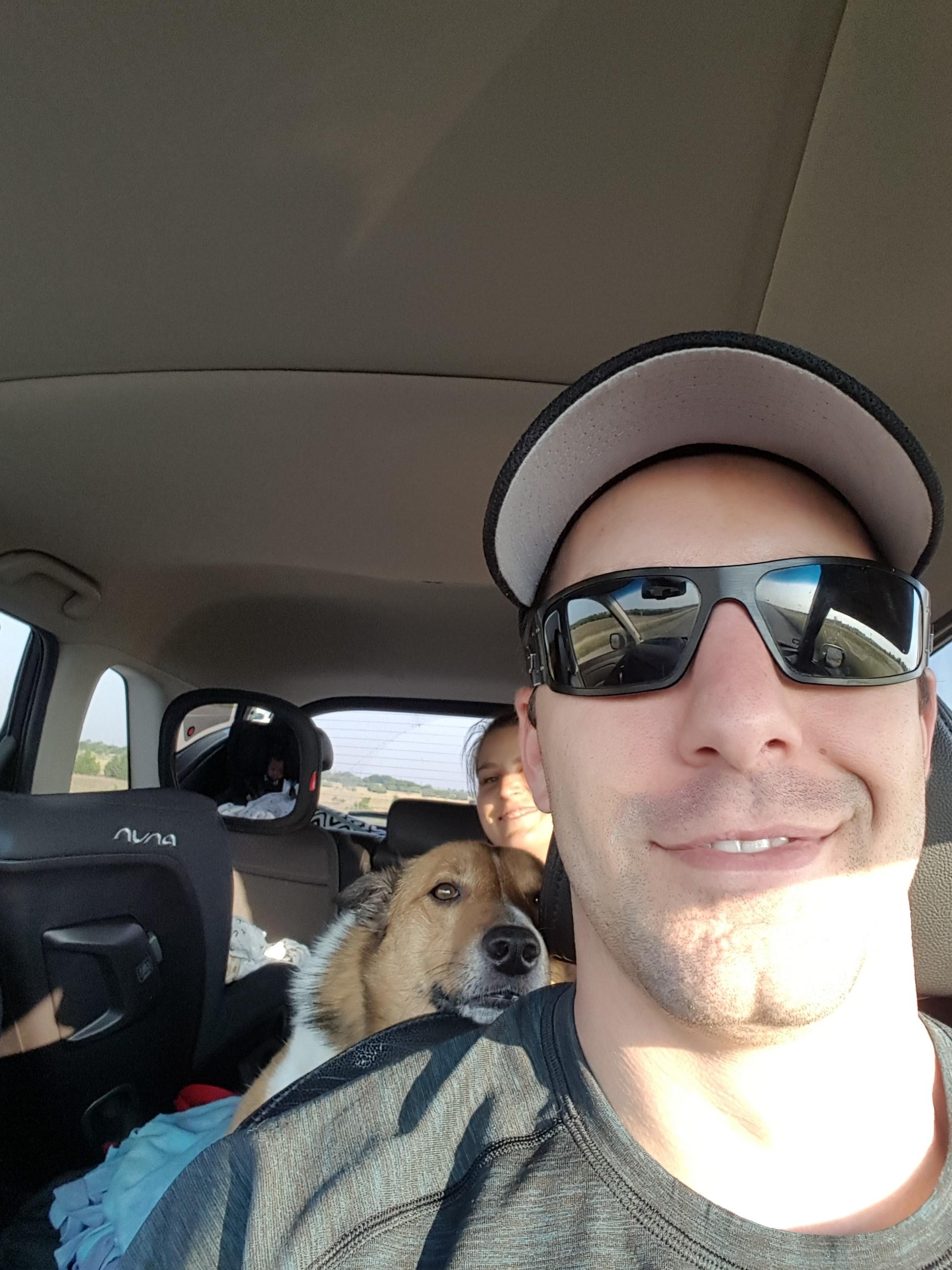 dog navigator