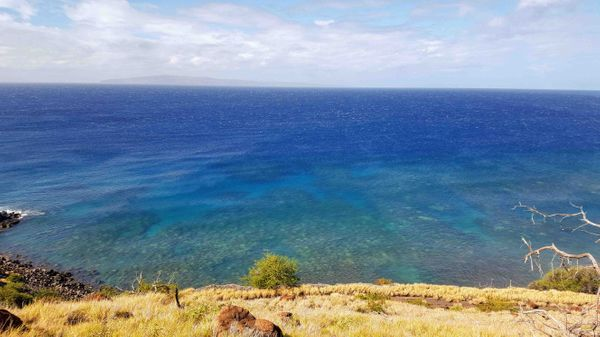 Family Vacation: Maui